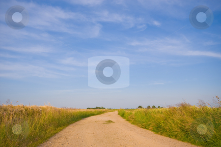 Country road trough farmlandscape stock photo, Country road trough farmlandscape with a blue sky by Karin Claus