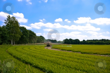 Bright green agriculture farmland  stock photo, Bright green agriculture farmland with tractor sprinkle-sweeper installation with cloudy blue sky by Karin Claus