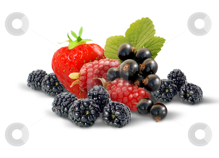 Fresh Berries stock photo, Selection of fresh berries by James Rooney