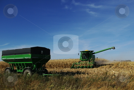 Iowa fall corn harvest stock photo, A big green combine finishes the corn rows it has been harvesting to transfer the corn it has picked and separated from ears into a waiting farm wagon.   Iowa usually leads the nation and the world in corn production. by Dennis Thomsen