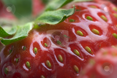 Close-up Strawberries stock photo,  by Andy Dean