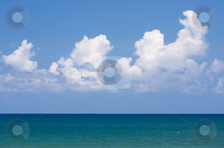 Tropical Shoreline stock photo, Tropical Shoreline on Kauai, Hawaii by Andy Dean