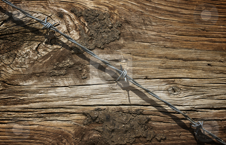 Aged Wood Texture and Barbed Wire stock photo, Aged Wood Texture and Barbed Wire Macro Background. by Andy Dean