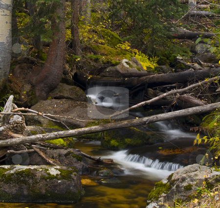 Cluttered Tranquility stock photo, Mill Creek Basin Trail - Rocky Mountain National Park by John McLaird