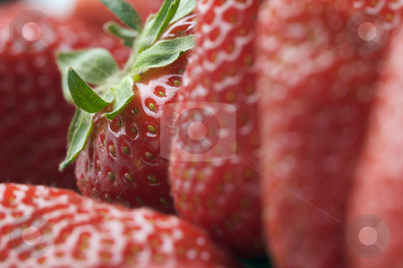 Close-up Strawberries stock photo, Macro of Strawberry Series by Andy Dean