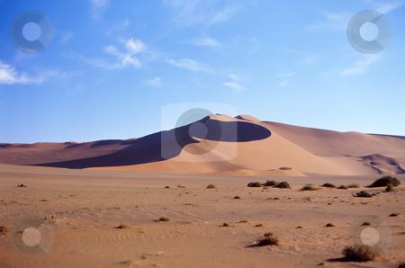 Desert stock photo, Panoramic view on sand desert by Seregey Korotkov