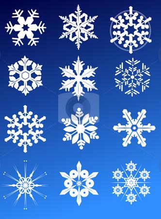 Twelve snowflakes stock vector clipart, Twelve snowflakes as winter design element by Leonid Dorfman