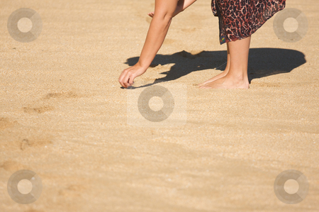 Woman Shell Searching stock photo, Woman Shell Searching on a Beach in Hawaii by Andy Dean
