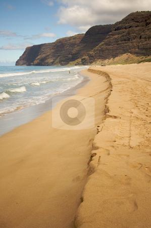 Polihale Beach, Kauai stock photo, Polihale Beach on Kauai, Hawaii by Andy Dean