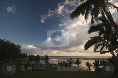 Tropical Sunset with Palm Trees stock photo, Tropical Sunset with Palm Trees and clouds. by Andy Dean