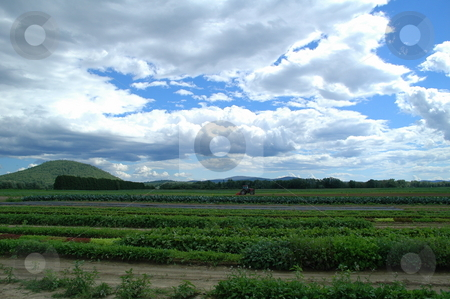 Farming in New Hampshire stock photo,  by Richard Sheehan