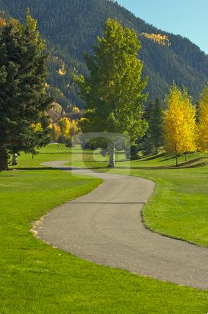 Aspen Golf Course with Pines stock photo, Aspen Golf Course as the Aspen Pines Change Color by Andy Dean