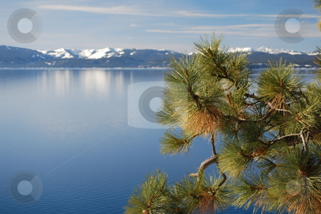 Serenity stock photo, Lake Tahoe on the Nevada side. by Steven Kapinos