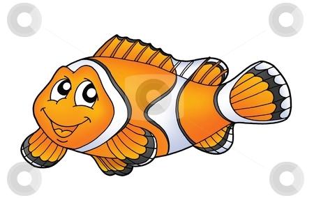 Clownfish stock photo, Smiling orange clownfish - color illustration by Klara Viskova