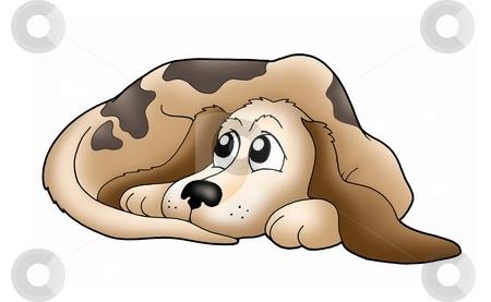Cute dog stock photo, Color illustration of cute brown dog. by Klara Viskova
