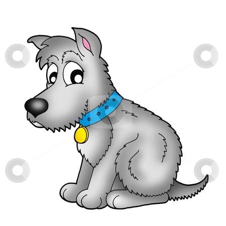 Cute grey dog stock photo, Cute grey dog - color illustration. by Klara Viskova