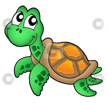 Little sea turtle stock photo, Little sea turtle - color illustration. by Klara Viskova