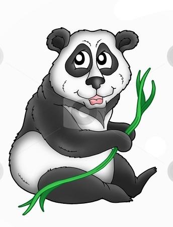 Panda stock photo, Color illustration of panda bear. by Klara Viskova