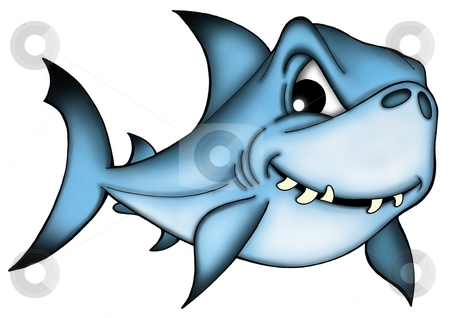 Shark stock photo, Shark on white background - color illustration by Klara Viskova