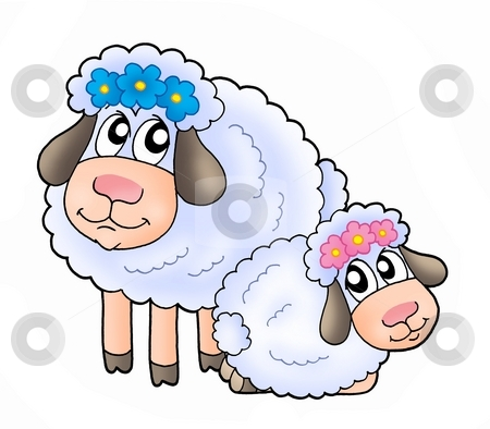 Sheeps stock photo, Color illustration of two white sheeps. by Klara Viskova