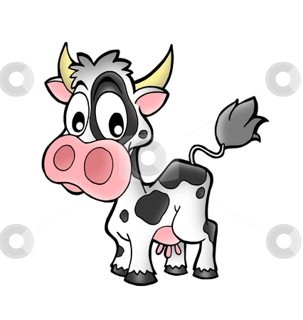 Small cow stock photo, Small caw on white background - color illustration. by Klara Viskova