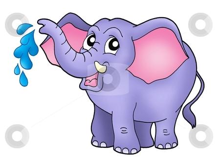 Small elephant stock photo, Color illustration of little elephant. by Klara Viskova