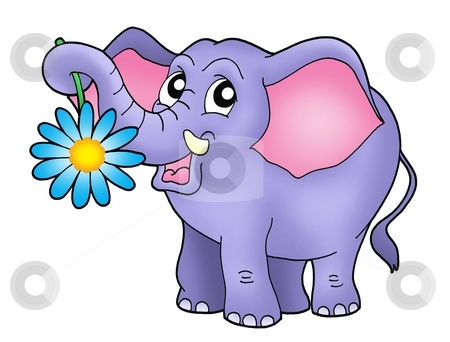 Small elephant with flower stock photo, Color illustration of small elephant with flower. by Klara Viskova