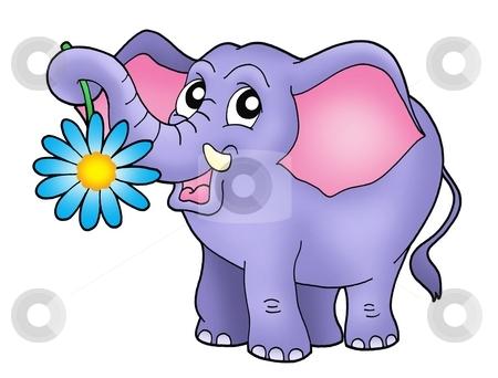 Small elephant with flower stock photo, Color illustration of small elephant with flower. by Klara Viskova