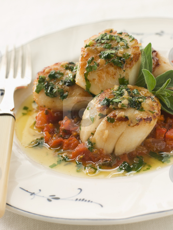 Pan Fried Scallops Piperade and Garlic Butter stock photo,  by Monkey Business Images