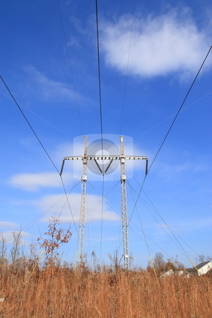 Powerlines stock photo, Powerlines suppllying power to housing community by Jack Schiffer