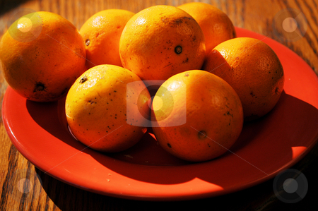 Oranges on a plate stock photo, Oranges on a plate ready for grabbing by Tim Markley