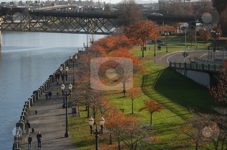 Portland Oregon  stock photo, A fall scene along the river in Portland Oregon by Tim Markley