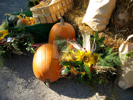 Pumpkins stock photo,  by Wolfgang Heidasch