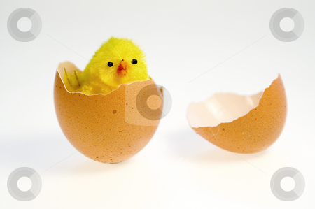 Easter egg stock photo, Easter by Marek Kosmal