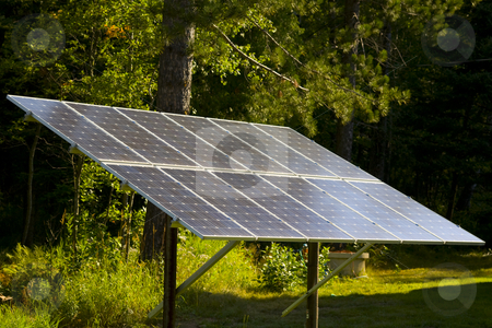 Solar Panel in a Forest Sunbeam stock photo, A large solar panel in a forest sunbeam on a summer morning. by John McLaird
