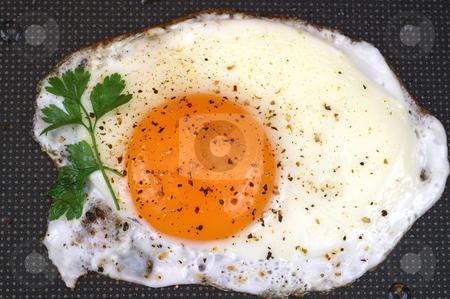 Fried egg stock photo, Fried egg on frying pan background by Marek Kosmal