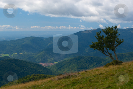 Vogesen Landschaft - Landscape in the Vosges Mountains stock photo, Die Vogesen (frz. les Vosges, dt. fr?her auch Wasgenwald) sind ein Mittelgebirge in Ostfrankreich. - The Vosges or Vosges Mountains are a mountain range in eastern France, stretching along the west side of the Rhine valley in a north-north-east direction, from Belfort to Saverne. by Wolfgang Heidasch