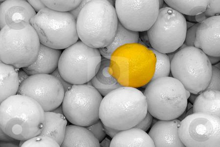 Zitronen colorkey stock photo, Http://de.wikipedia.org/wiki/Zitrone by Wolfgang Heidasch
