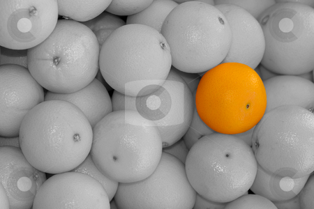 Orangen colorkey stock photo, Http://de.wikipedia.org/wiki/Orange by Wolfgang Heidasch