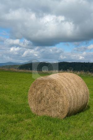 Strohballen in der Auvergne, Frankreich stock photo, Strohballen in der Auvergne, Frankreich by Wolfgang Heidasch