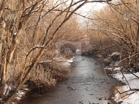 Winter Stream stock photo, A stream flows through the cold on a winter day in Colorado. by Ben O'Neal