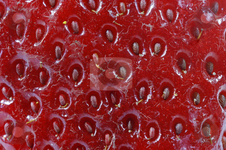 Strawberry stock photo, Strawberry by Lothar Hinz
