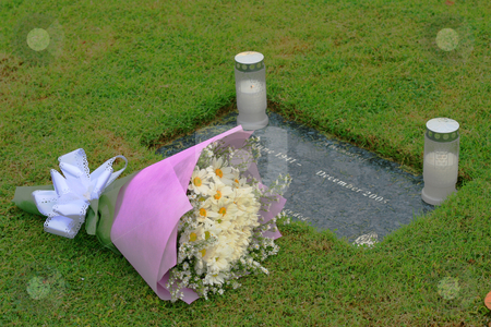 Rembering the dead stock photo, Garden cemetery with flowers and candles on tombstone by Jonas Marcos San Luis