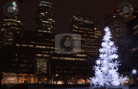 Christmas tree stock photo, Christmas tree in a park on Toronto skyscraper background by Pavel Cheiko