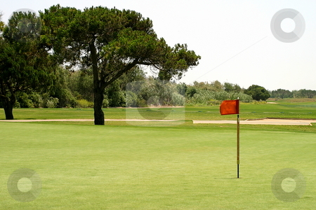 Golf stock photo, Golf green with pin at the end. by Henrik Lehnerer