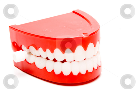 Chattering Teeth stock photo, A set of the ever popular and highly amusing chattering teeth. by Robert Byron