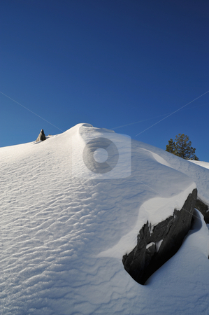 Snow covered summit and sky stock photo, Snow covered mountain peak on a clear cloudless day with a single tree in the background, image contains GPS location information by Lynn Bendickson
