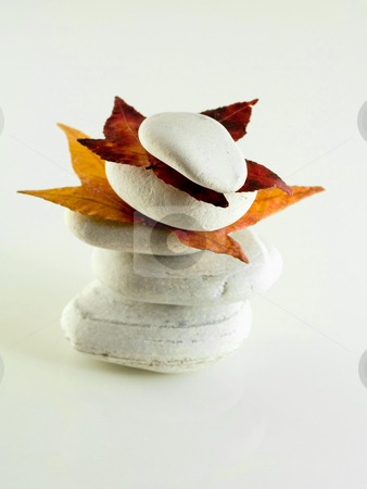 Beach stones with  leaves stock photo, White off beach stones with fall  leaves on white by Laurent Dambies