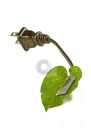 Solar cell stock photo, A leaf with a solar cell to make power by David Gallaher