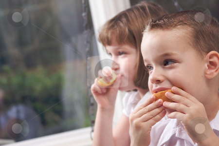 Sister and Brother Eating an Apple stock photo, Sister and Brother Having Fun Eating an Apple by Andy Dean